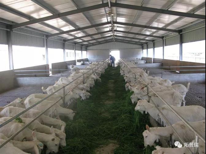 养殖场智能化监测及控制系统
